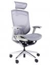 iFit Super Ergonomic Chair