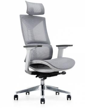 Endurance Pearl Grey Ergonomic Mesh Chair